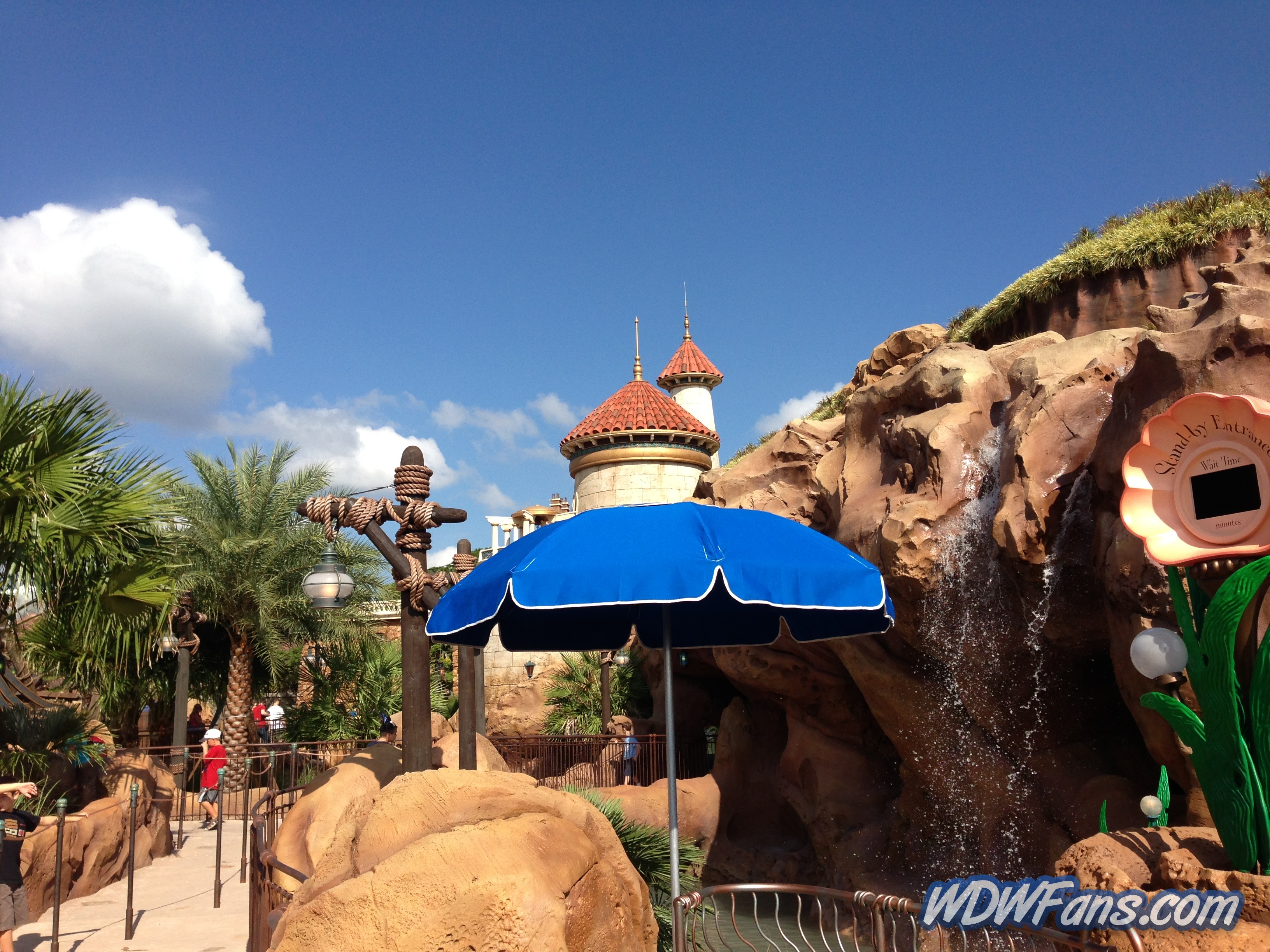 Enchanted Forest Soft Opening