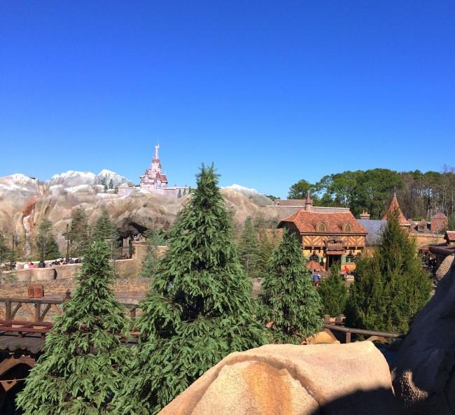 Seven Dwarfs Mine Train - Top View